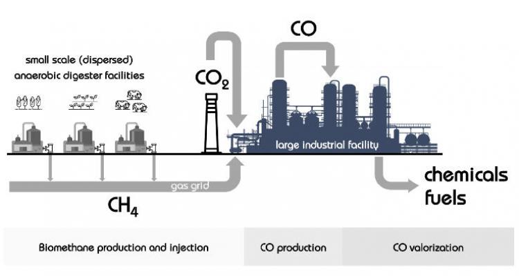 Biogas as a source for platform chemicals